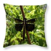 Widow Skimmer Dragonfly Female Throw Pillow