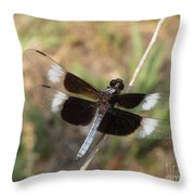 Widow Skimmer Dragonfly Male Throw Pillow