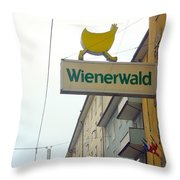 Wienerwald In Salzburg Throw Pillow