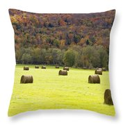 Wies Colors Throw Pillow