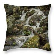 Wigwam Falls Blue Ridge Parkway Throw Pillow
