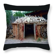Wigwam Throw Pillow