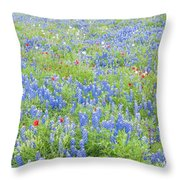 Wild About Wildflowers Of Texas. Throw Pillow