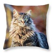 Wild And Beautiful Throw Pillow