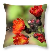 Wild And Beautiful 3 Throw Pillow