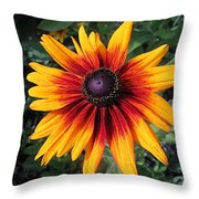 Wild And Crazy Coneflower Throw Pillow