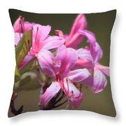 Wild Azaleas Throw Pillow