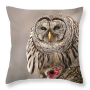 Wild Barred Owl With Prey Throw Pillow