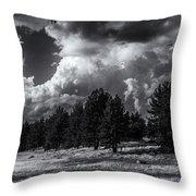 Wild-beauty Throw Pillow