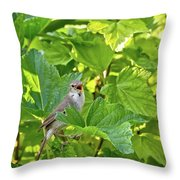 Wild Bird In A Currant Bush. Throw Pillow
