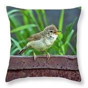 Wild Bird In A Natural Habitat.  Throw Pillow