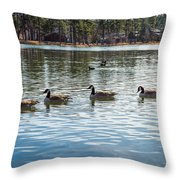 Wild Birds #2 Throw Pillow