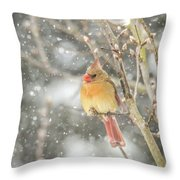 Wild Birds Of Winter - Female Cardinal In The Snow Throw Pillow