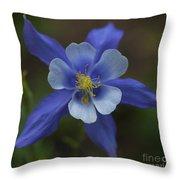 Wild Blue Throw Pillow by Barbara Schultheis