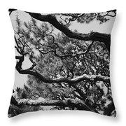 Wild Branches Throw Pillow