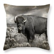 Wild Buffalo In Yellowstone Throw Pillow