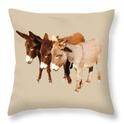 Wild Burro Buddies Throw Pillow