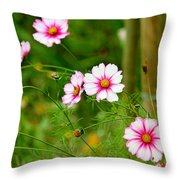 Wild Charm Throw Pillow
