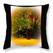 Wild Cherry Tree In Summer Sun Throw Pillow