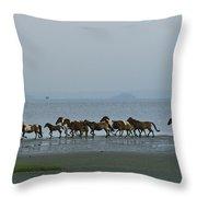 Wild Chincoteague Ponies Run Throw Pillow