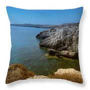 Wild Coast Cyprus Throw Pillow