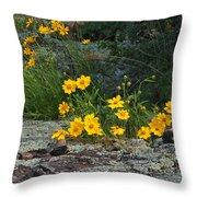 Wild Coreopsis On Hughes Mountain 1 Throw Pillow