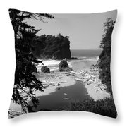 Wild Cove Throw Pillow