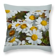 Wild Daisies II Throw Pillow