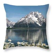 Wild Daisies In The Tetons Throw Pillow