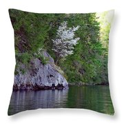 Wild Dogwood Throw Pillow