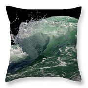 Wild Edge Throw Pillow