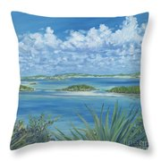 Wild Exumas Throw Pillow