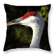 Wild Eyed Throw Pillow