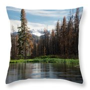 Wild Fire Aftermath  Throw Pillow