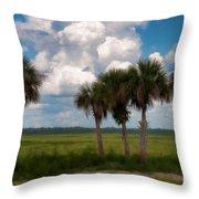 Wild Florida Throw Pillow