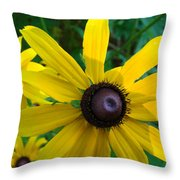 Brown Eyed Suzy  Throw Pillow