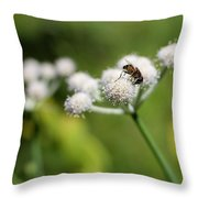 Wild Flower Bluff Lake Ca 3 Throw Pillow