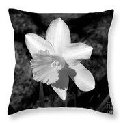 Wild Flower Oklahoma Throw Pillow