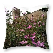 Wild Flowers At The Old Fortress Throw Pillow