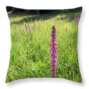 Wild Flowers In The Uinta's Throw Pillow
