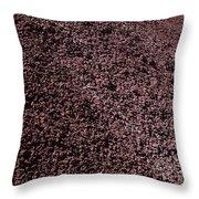 Wild Flowers John Day Fossil Beds  Throw Pillow