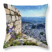 Wild Flowers On Loophole In Palamidi Castle Throw Pillow