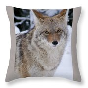 Wild Free And Beautiful Throw Pillow