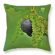 Wild Fruit Throw Pillow