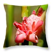 Wild Ginger Throw Pillow