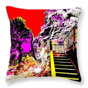 Wild Goddess At Kashi Throw Pillow by Eikoni Images