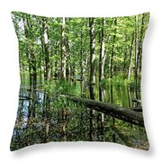 Wild Goose Woods Pond II Throw Pillow