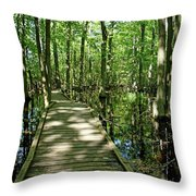 Wild Goose Woods Pond Vi Throw Pillow