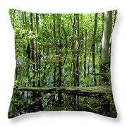Wild Goose Woods Pond Vii Throw Pillow