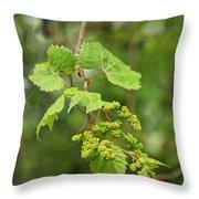 Wild Grapes 1992 Throw Pillow